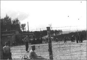 Vue d'ensemble du petit camp de Buchenwald (source : Foucher-Créteau)